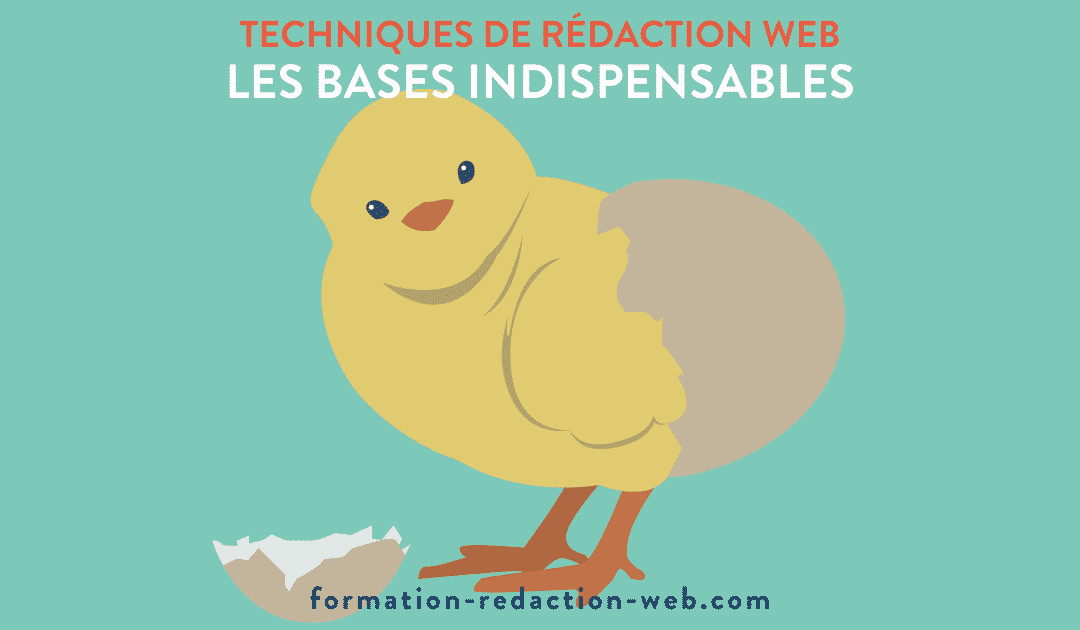 technique redaction web bases