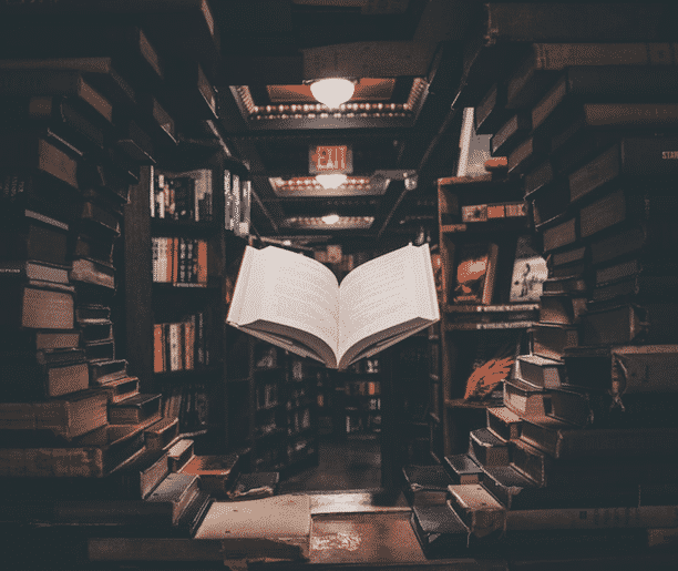 livres rédacteur web