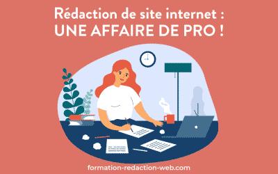 Rédaction de site internet : une affaire de professionnels