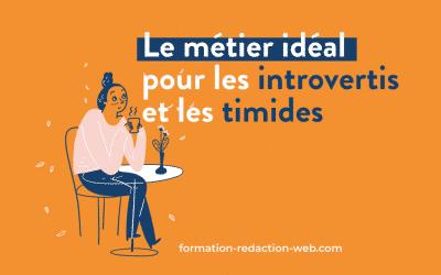 Rédacteur web : métier idéal pour les personnes timides ou introverties ?